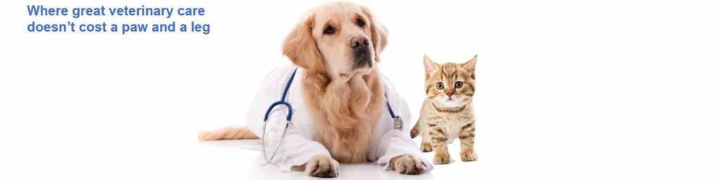 Boca Veterinary Clinic doctor dog & cat