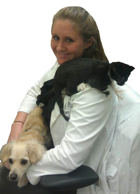 Dr. Reum a Veterinarian at Boca Vet Clinic.