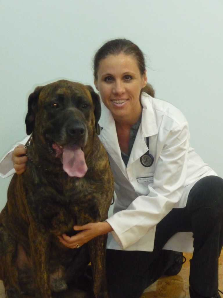 Dr. Lesley Hack a Veterinarian at Boca Veterinary Clinic with her dog.